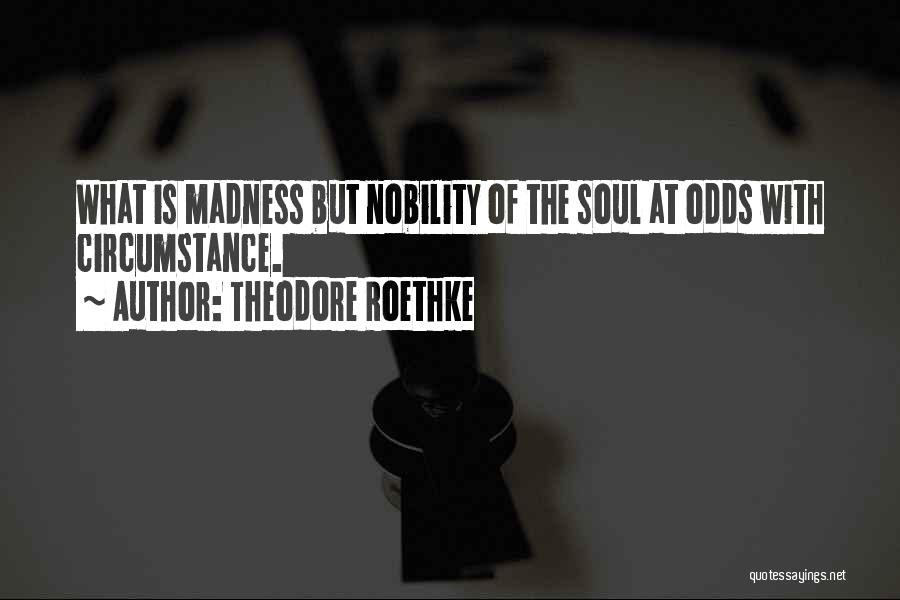 Theodore Roethke Quotes 1816306