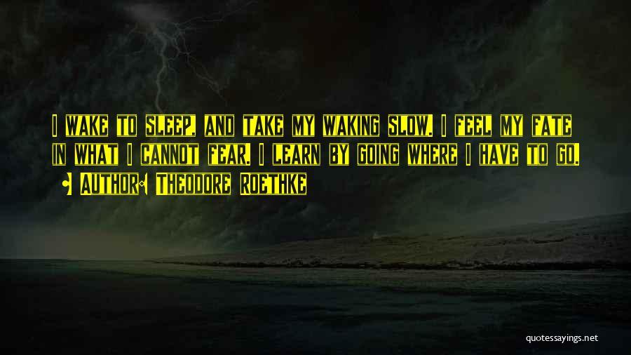 Theodore Roethke Quotes 2114753
