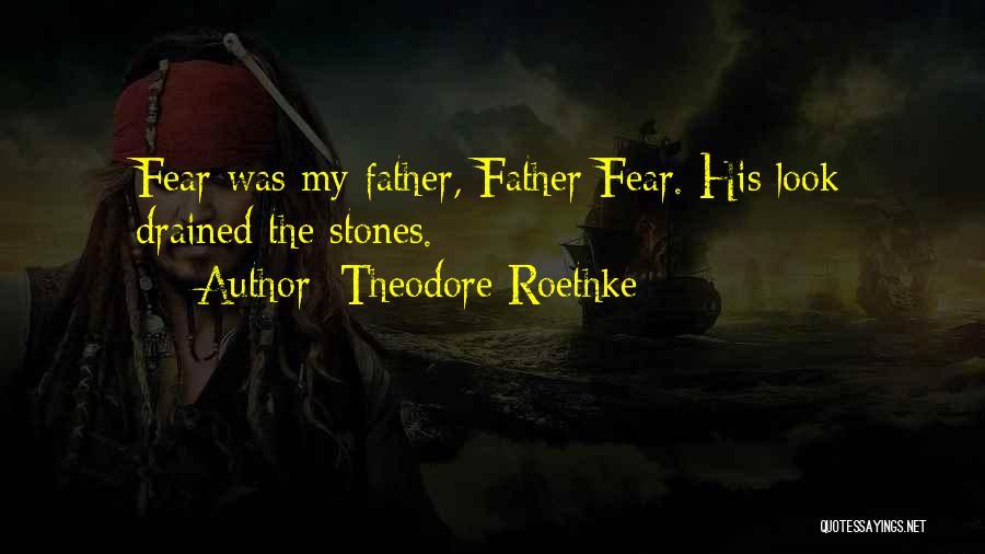 Theodore Roethke Quotes 2159081
