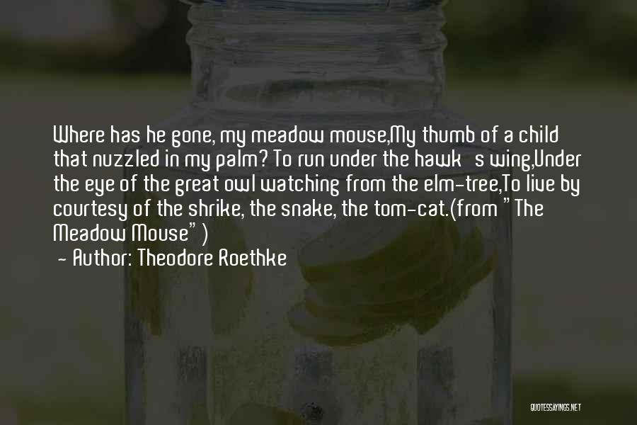 Theodore Roethke Quotes 340282