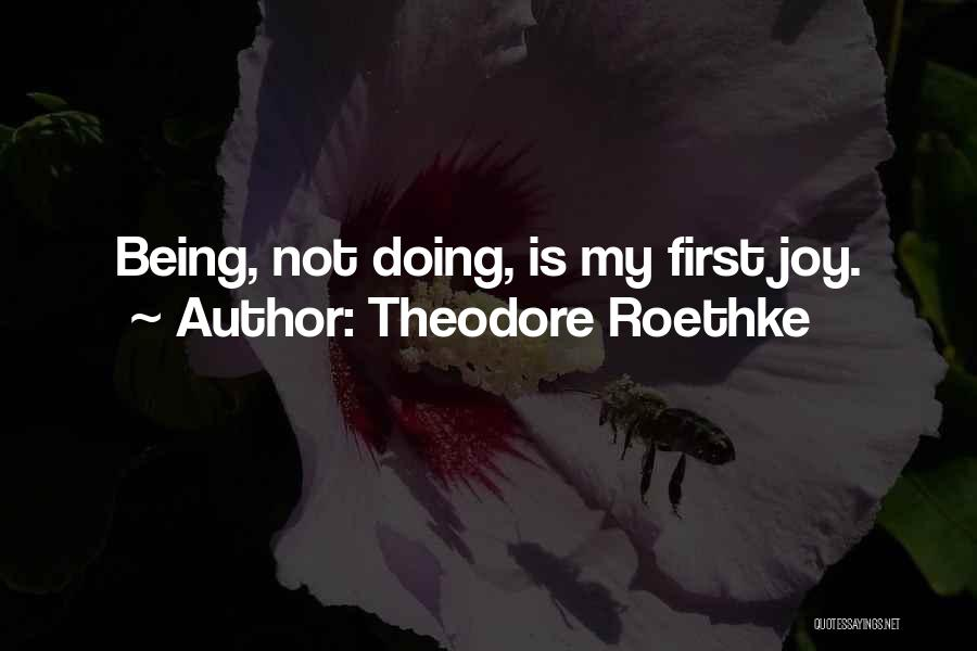Theodore Roethke Quotes 551068