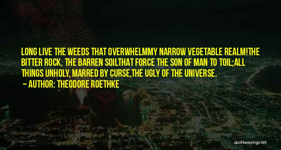 Theodore Roethke Quotes 575117