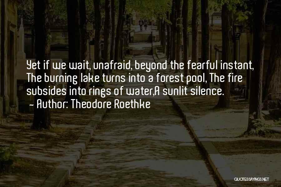 Theodore Roethke Quotes 77198