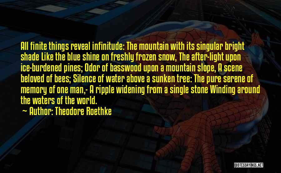 Theodore Roethke Quotes 826337