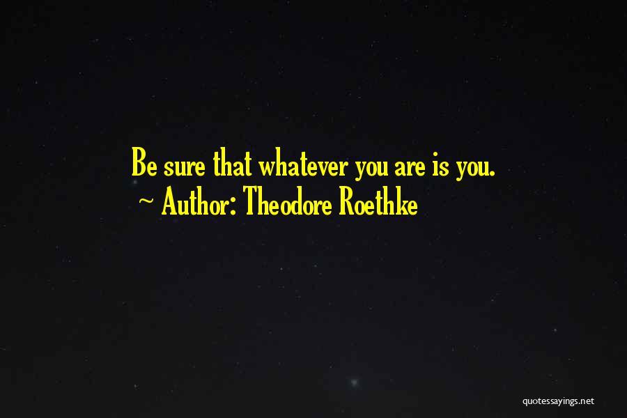 Theodore Roethke Quotes 877039