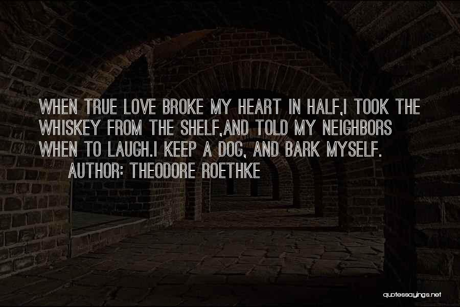 Theodore Roethke Quotes 878974