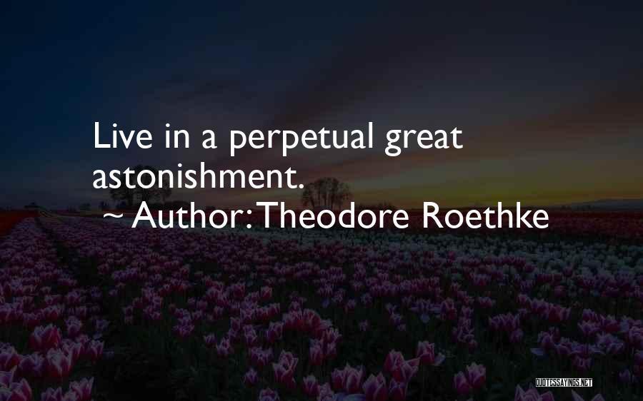 Theodore Roethke Quotes 995656