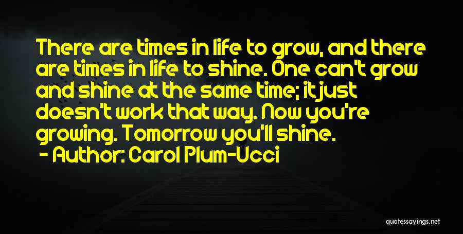 There Are Times In Life Quotes By Carol Plum-Ucci
