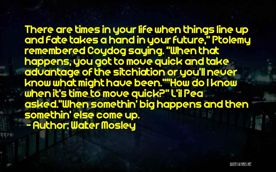 There Are Times In Life Quotes By Walter Mosley