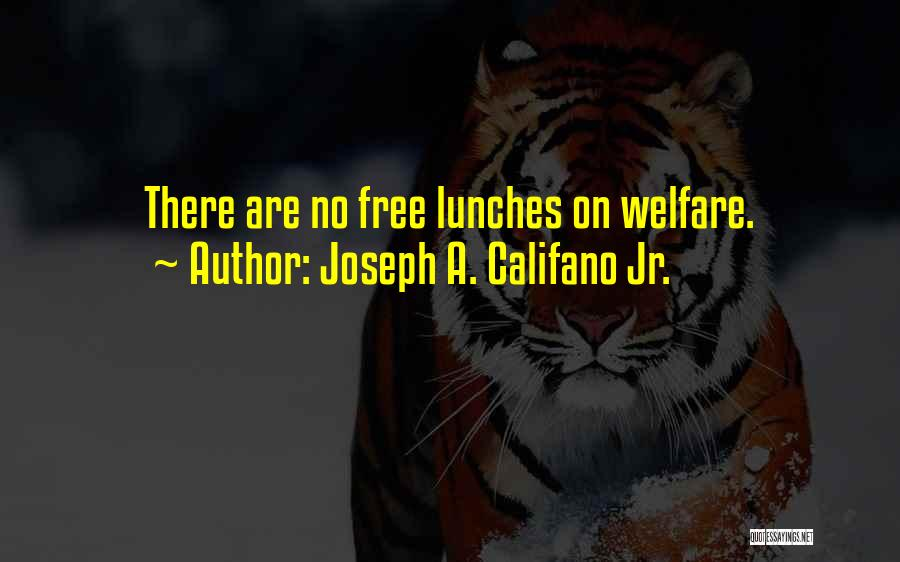 There Is No Free Lunch Quotes By Joseph A. Califano Jr.