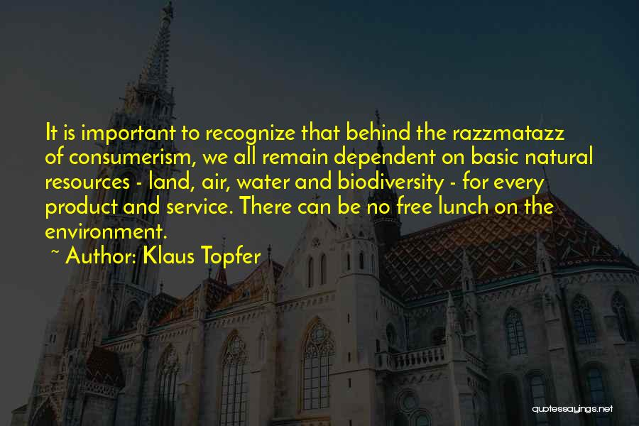 There Is No Free Lunch Quotes By Klaus Topfer
