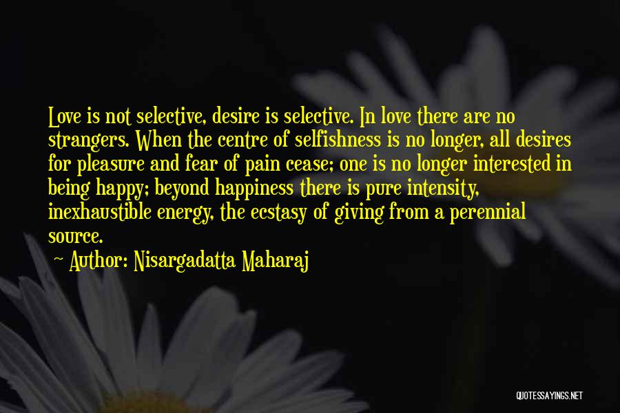 There Is No Happiness Quotes By Nisargadatta Maharaj