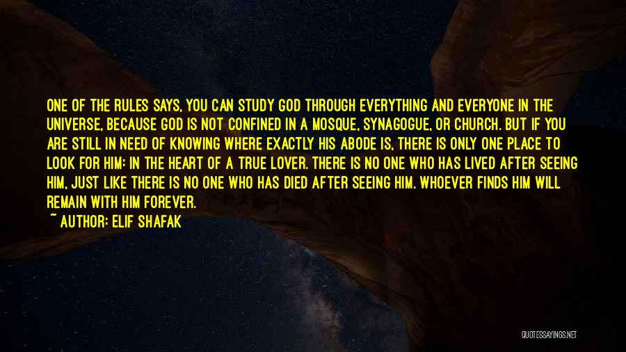 There Is No One Like God Quotes By Elif Shafak
