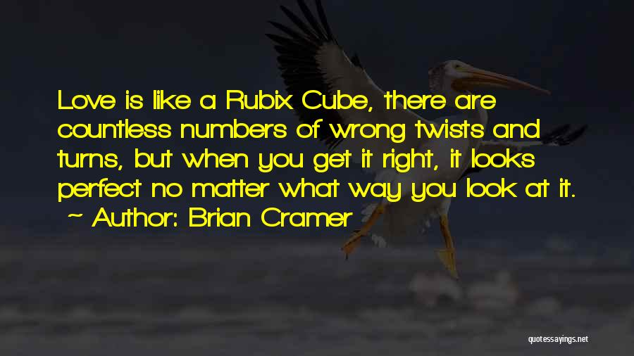There Is No Perfect Love Quotes By Brian Cramer