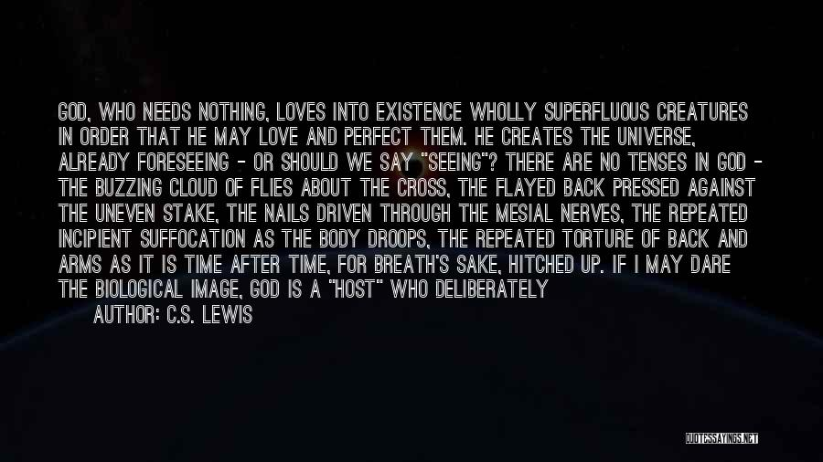 There Is No Perfect Love Quotes By C.S. Lewis