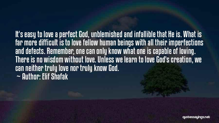 There Is No Perfect Love Quotes By Elif Shafak