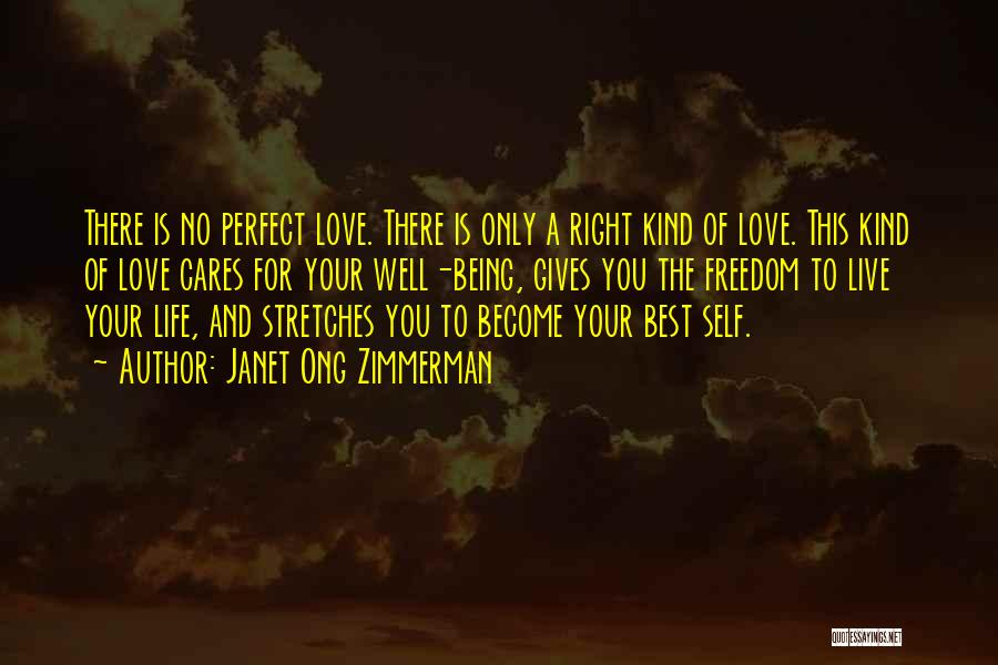 There Is No Perfect Love Quotes By Janet Ong Zimmerman