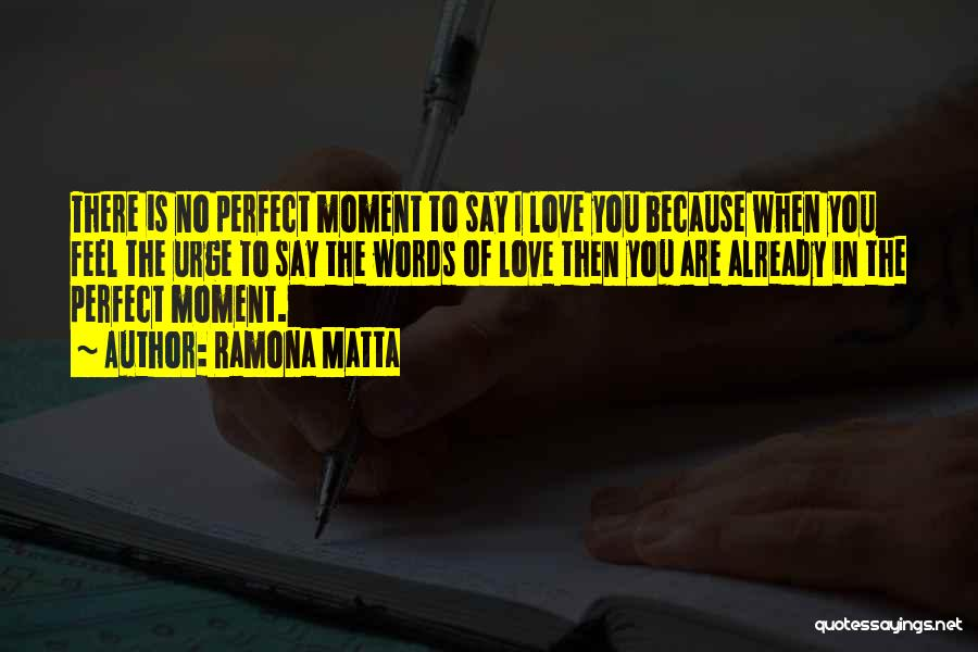 There Is No Perfect Love Quotes By Ramona Matta