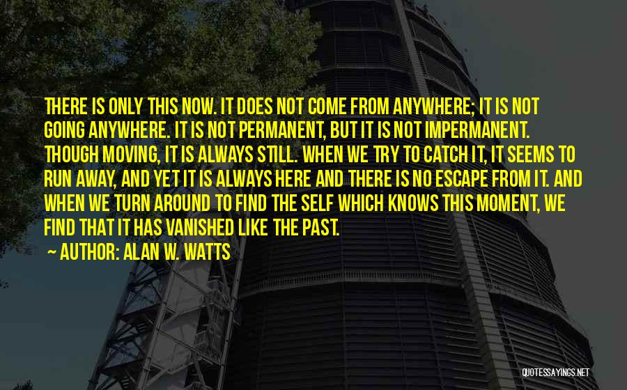 There's No Permanent Quotes By Alan W. Watts
