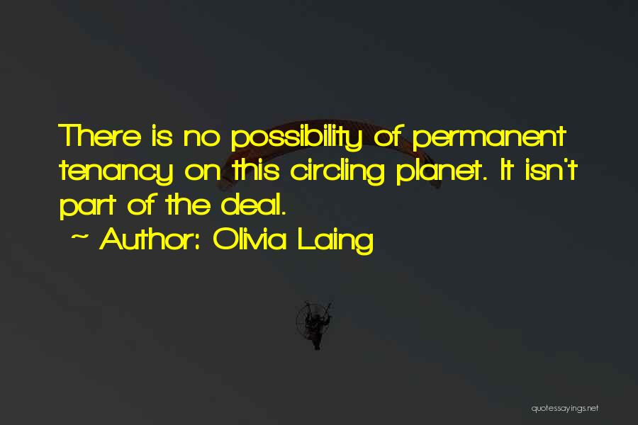 There's No Permanent Quotes By Olivia Laing