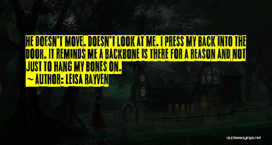 There's No Reason To Look Back Quotes By Leisa Rayven