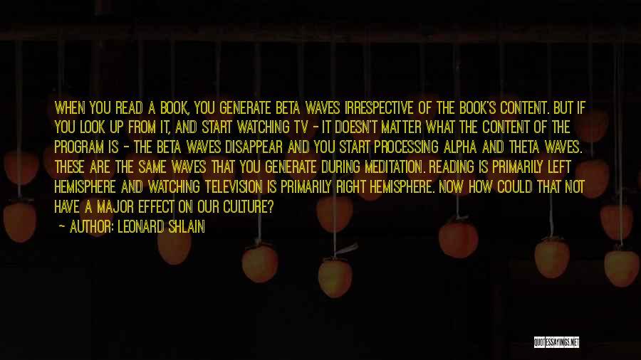 Theta Meditation Quotes By Leonard Shlain