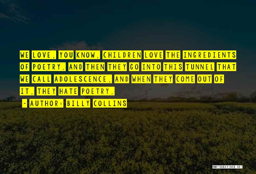 They Come They Go Quotes By Billy Collins