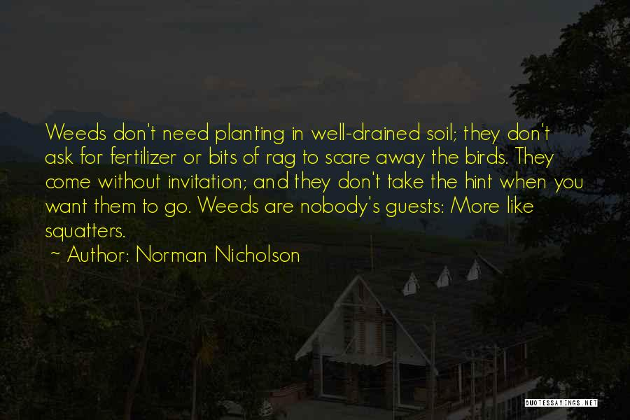 They Don't Need You Quotes By Norman Nicholson