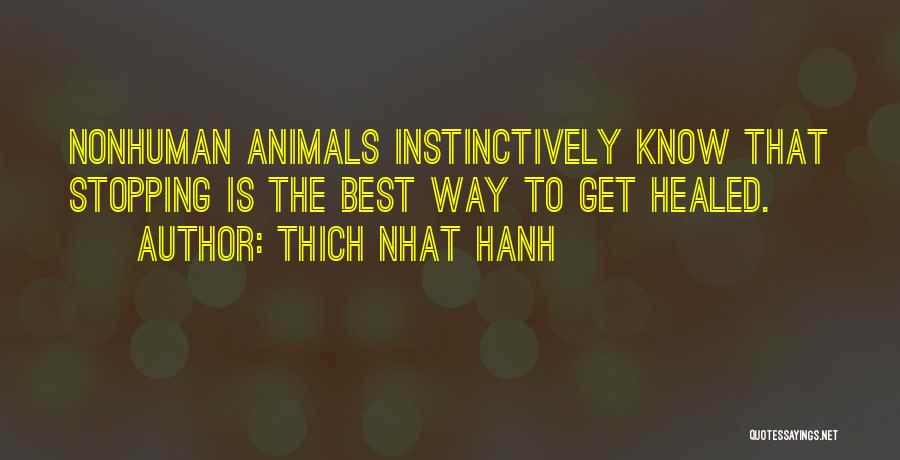 Thich Nhat Hanh Quotes 1227771