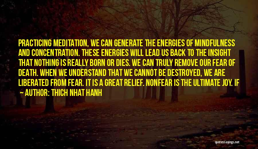 Thich Nhat Hanh Quotes 1420307