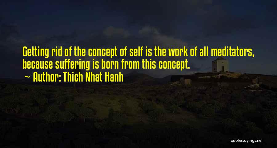 Thich Nhat Hanh Quotes 1627233