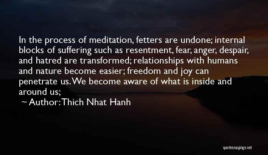 Thich Nhat Hanh Quotes 249494
