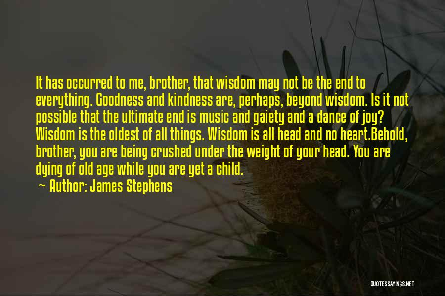 Things Being Possible Quotes By James Stephens