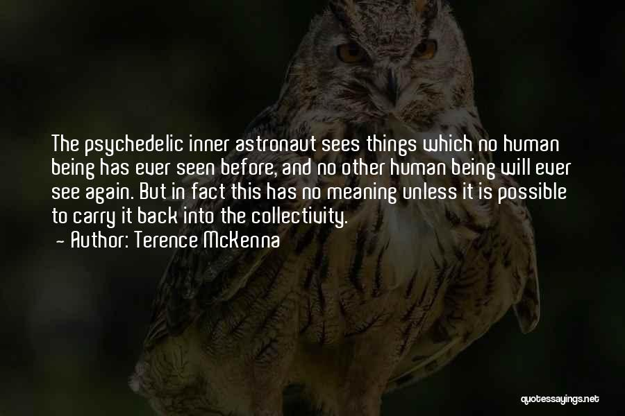 Things Being Possible Quotes By Terence McKenna