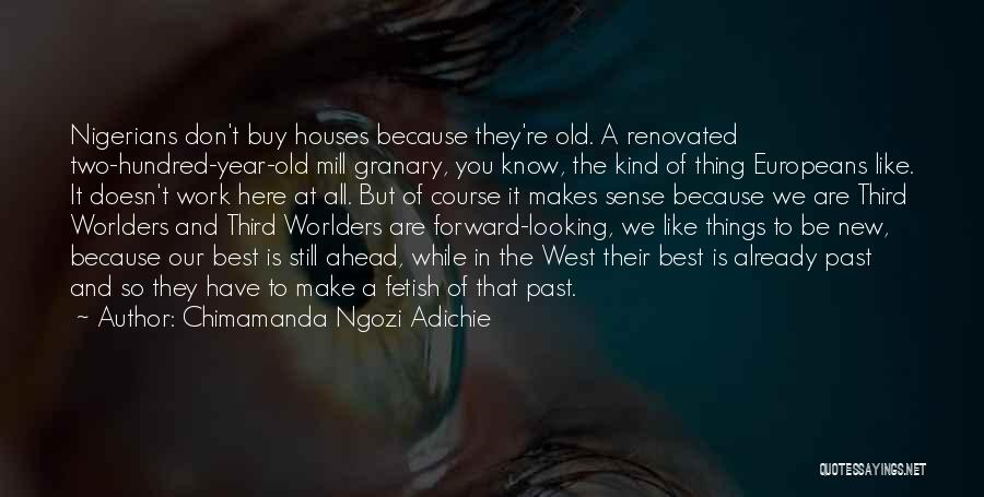 Things Make Sense Quotes By Chimamanda Ngozi Adichie