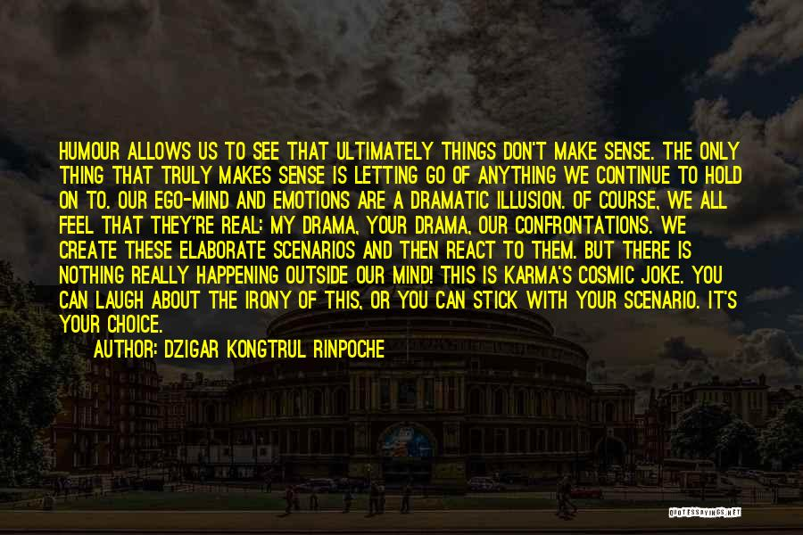 Things Make Sense Quotes By Dzigar Kongtrul Rinpoche