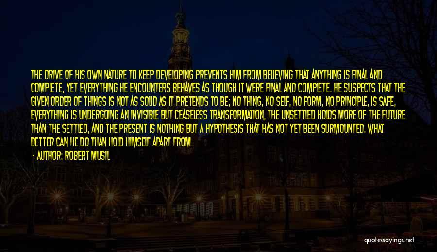 Things Make Sense Quotes By Robert Musil