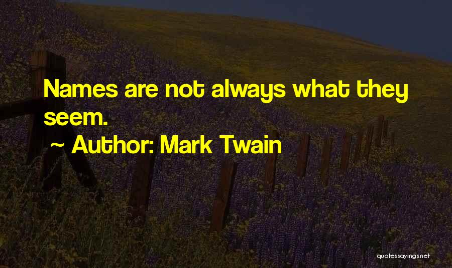 Things Not Always What They Seem Quotes By Mark Twain