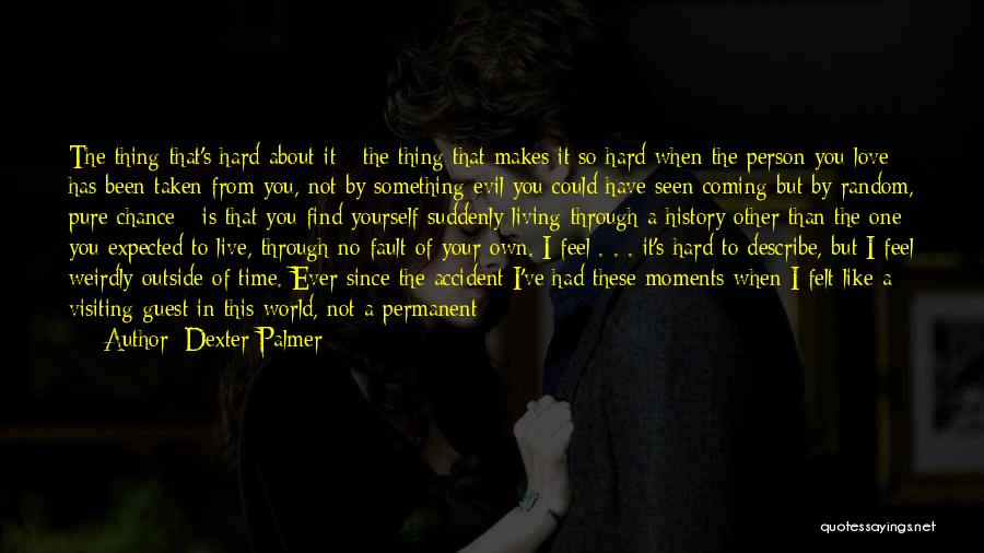 Things You Used To Do Quotes By Dexter Palmer