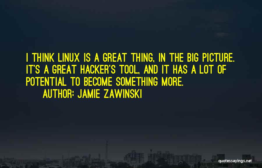 Think Big Picture Quotes By Jamie Zawinski