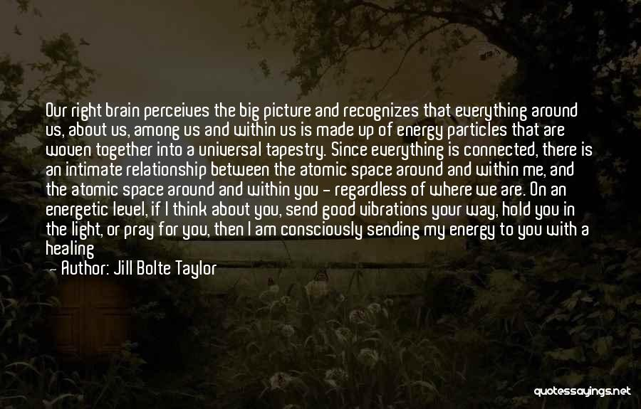 Think Big Picture Quotes By Jill Bolte Taylor