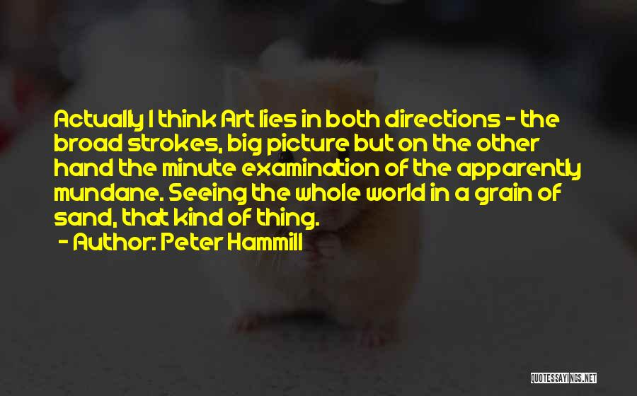 Think Big Picture Quotes By Peter Hammill