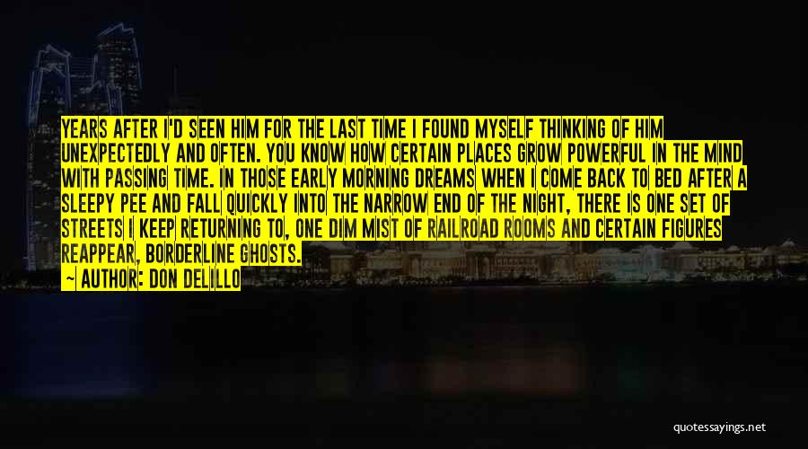 Thinking Quickly Quotes By Don DeLillo