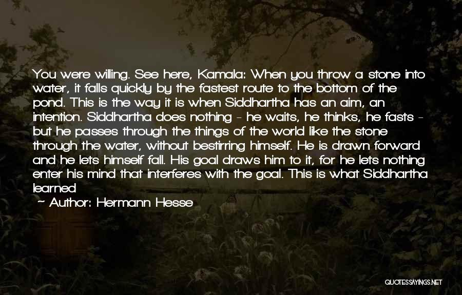 Thinking Quickly Quotes By Hermann Hesse