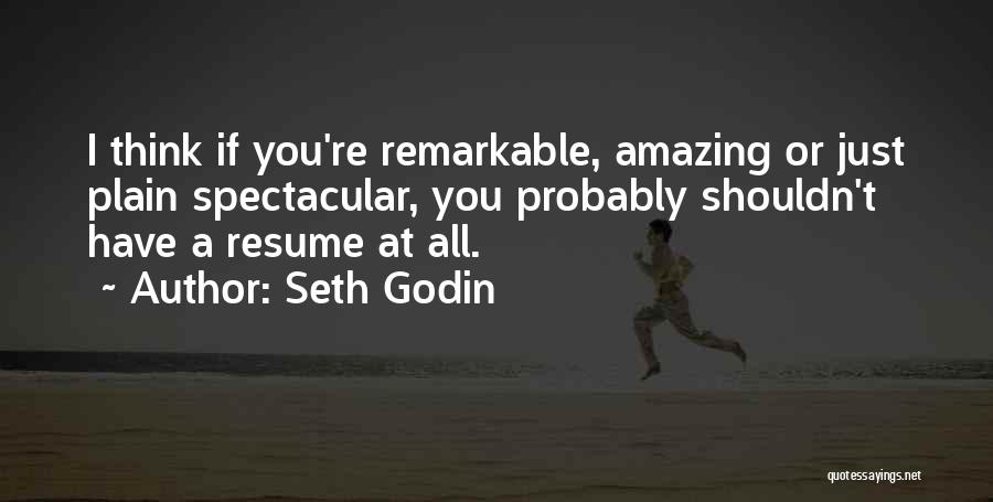 Thinking Someone Is Amazing Quotes By Seth Godin