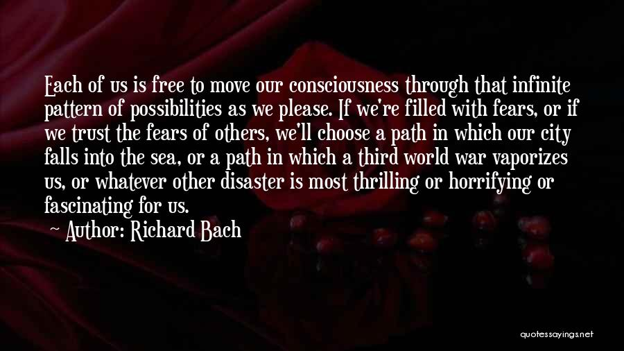 Third World War Quotes By Richard Bach