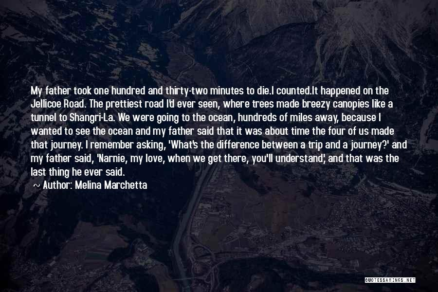Thirty Minutes Quotes By Melina Marchetta