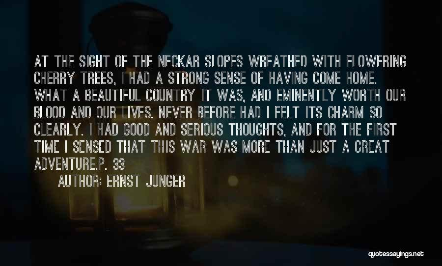 This Beautiful World Quotes By Ernst Junger