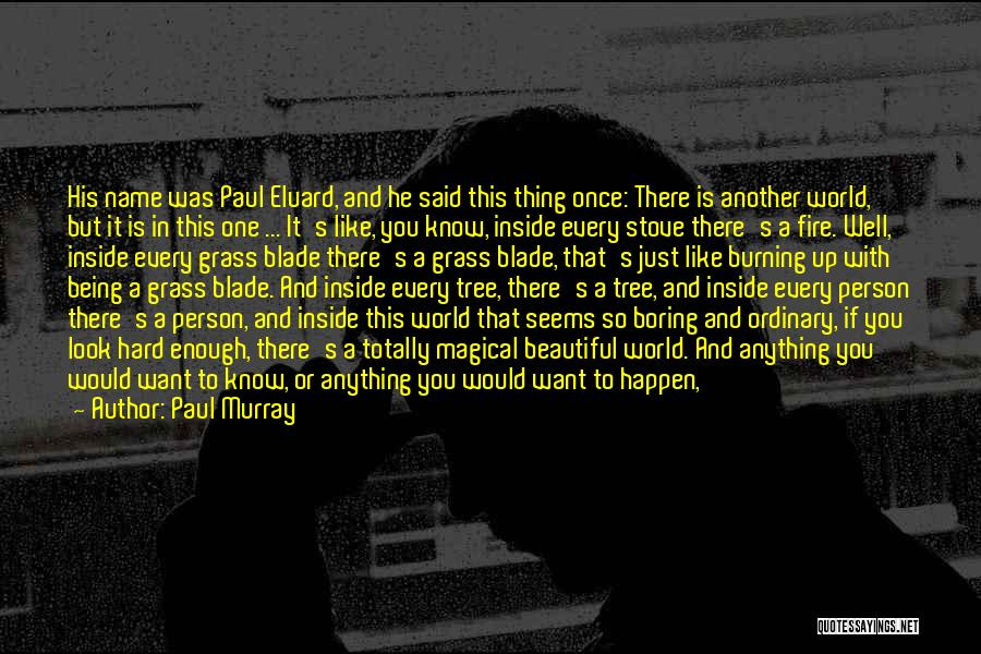 This Beautiful World Quotes By Paul Murray