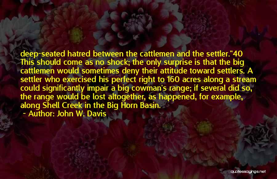 This Is 40 Quotes By John W. Davis